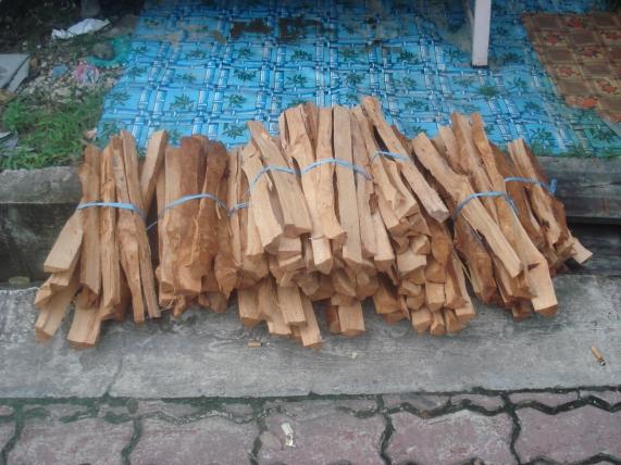 kayubangkita09_01